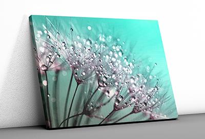 Leinwanddrucke, Druck auf Keilrahmen, Canvas